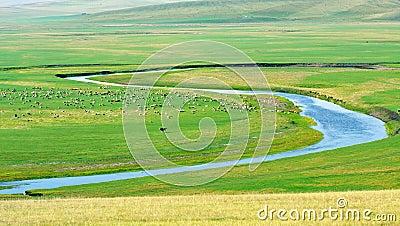 Inner mongolia pasture