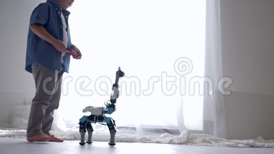 Innovation technology in childhood, cute kid boy is played by robot toy on remote control using mobile phone. In home stock video