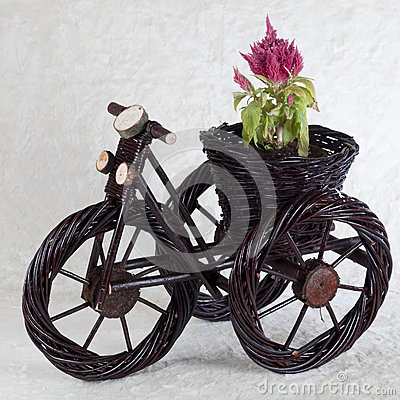Innovative flowerpot