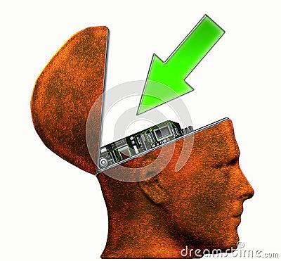 Input Head