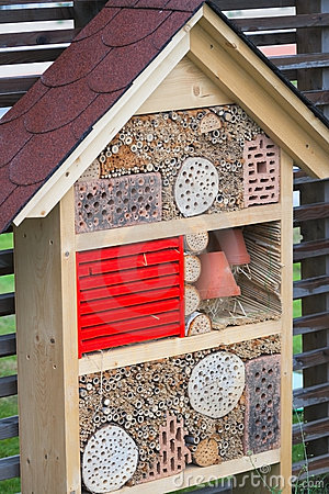 Insect accommodation