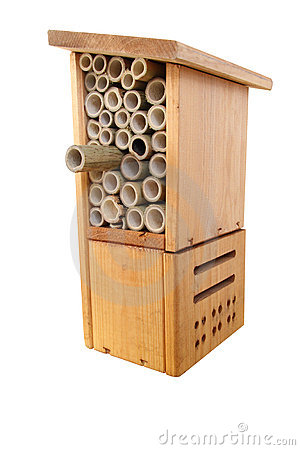 how to build a native bee box