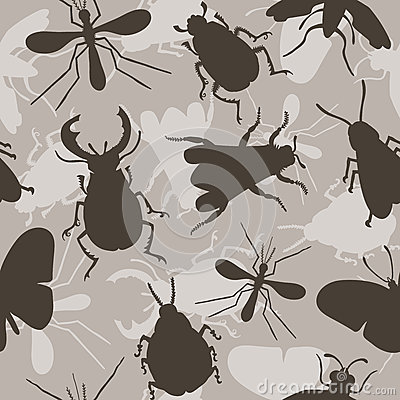 Free Insects. Bee. Beetles. Mosquito. Royalty Free Stock Images - 70874459