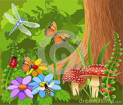 Insects in the forest