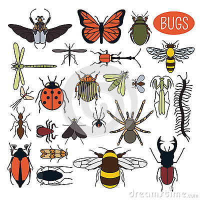 Free Insects Icon Flat Style. 24 Pieces In Set. Colour Version Royalty Free Stock Photos - 64149978