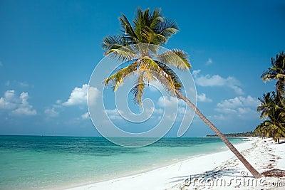 Insel-Paradies
