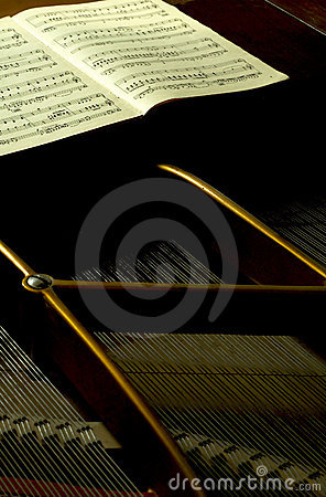 Inside A Baby Grand 3