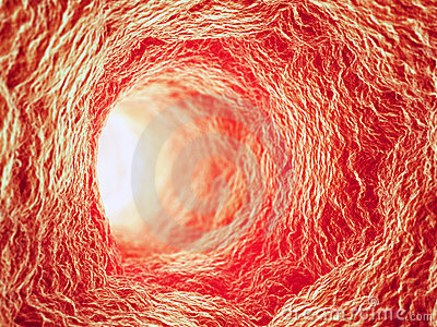 Inside a blood vessel