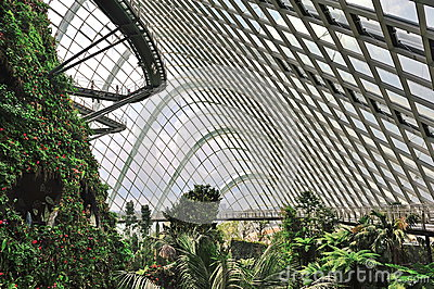 Inside the Cloud Forest in Gardens by the Bay