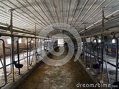 Inside of Dairy Barn