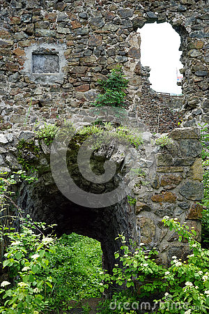 Free Inside Ruins Royalty Free Stock Photography - 72767487