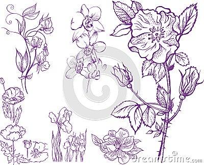Insieme dei fiori disegnati a mano immagini stock libere for Fiori disegnati