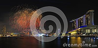 Inspección previo del desfile 2011 del día nacional de Singapur Foto editorial