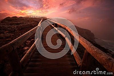Path at dawn