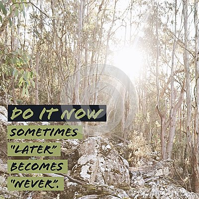 Inspirational motivational quote `Do it now. Sometimes later becomes never.` Stock Photo
