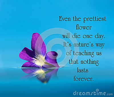inspirational quote stock photo image 43678236