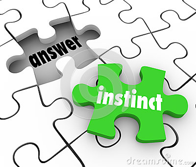 Instinct Puzzle Piece Find Answer Solve Puzzle Gut Feeling Solut Stock Photo