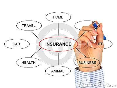 Insurance concept.