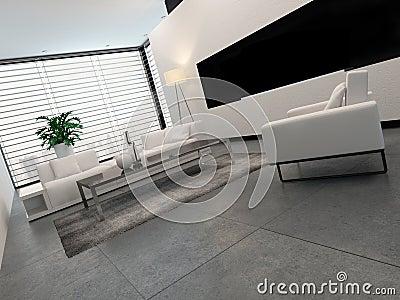 Int rieur blanc gris et noir moderne de salon for Interieur blanc et lumineux