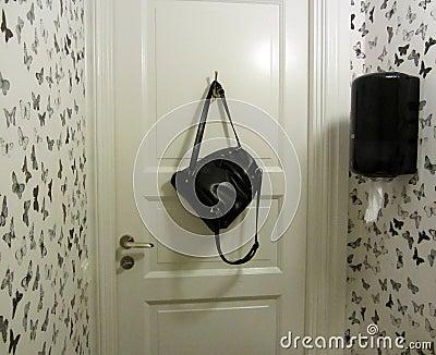 int rieur noir et blanc de toilettes photo stock image 44492338. Black Bedroom Furniture Sets. Home Design Ideas