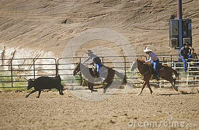 Inter-Tribal Ceremonial Indian Rodeo Editorial Stock Image