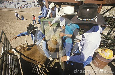 Inter-Tribal Ceremonial Indian Rodeo Editorial Stock Photo