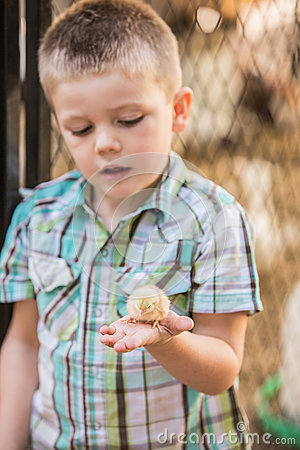 Free Interested Child With Baby Bird Royalty Free Stock Photo - 53929895