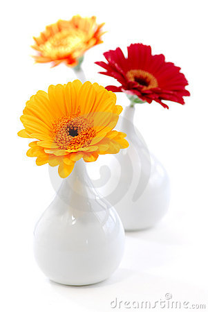 Interior design vases