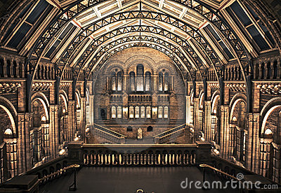 Interior of Natural History Museum, London. Editorial Stock Image