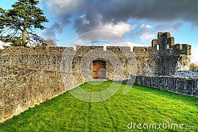 Interiores del castillo de Adare