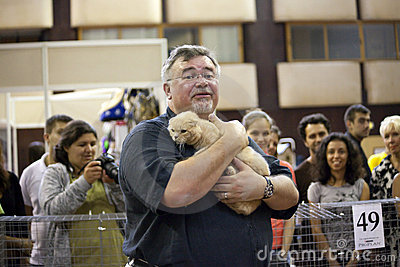 International Cat Exhibition Editorial Stock Photo