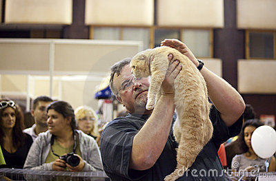International Cat Exhibition Editorial Photography