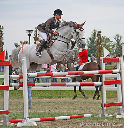 The International show jumping Championship Venice Editorial Stock Photo