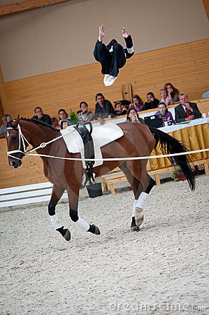 International Vaulting Competition, Slovakia Royalty Free Stock Photos - Image: 20011578