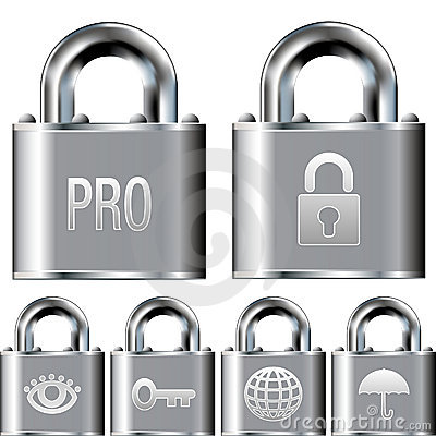 Internet security professional icon set