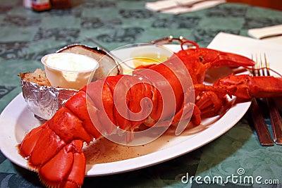 Intero piatto dell aragosta della Maine