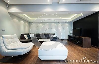 intrieur d un salon de luxe spacieux avec le plafond color - Un Salon De Luxe