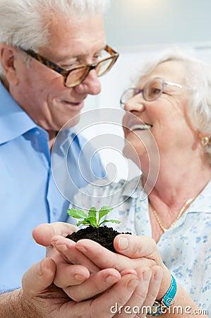 Investition und Einsparung für Ruhestand