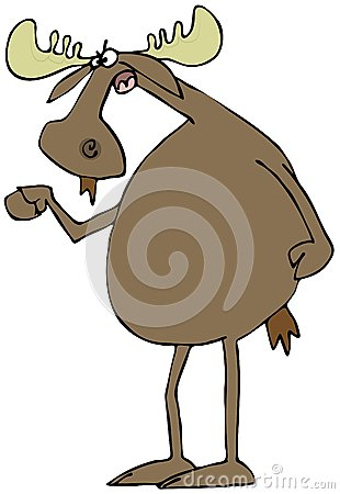 Irate moose