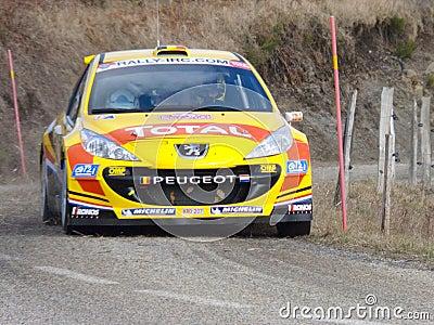IRC 2011 - NEUVILLE  / KLINGER - Peugeot 207 S2000 Editorial Stock Image