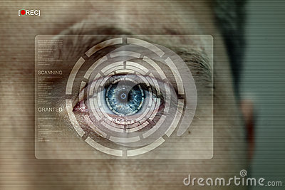 Iris recognition screen