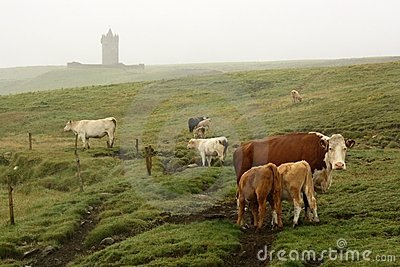 Irish landscape close Doolin village