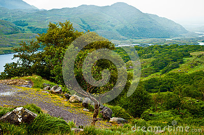 Irish landscape- Killarney National Park