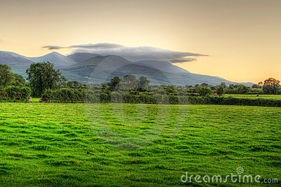 Irish meadow at sunset