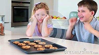 Irmãos que esperam cookies quentes para refrigerar para baixo video estoque