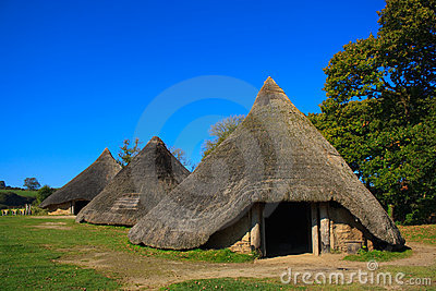 Iron age huts