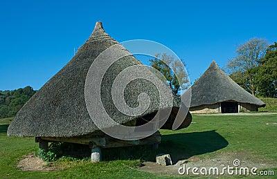 Iron age store hut