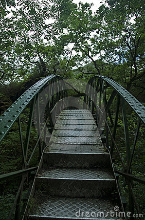 Iron bridge in jungle