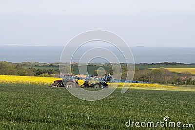 Irrigate crops