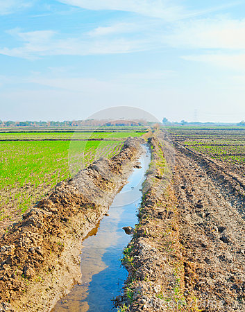Free Irrigation Canal Royalty Free Stock Images - 28047379